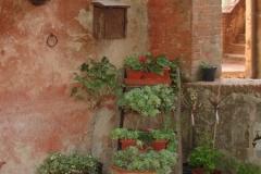 Planters-on-ladder-web-1